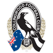 AFL Collingwood Magpies Live streaming North Melbourne Kangaroos   Collingwood Magpies AFL tv watch