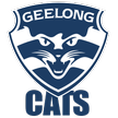 AFL Geelong Cats Live streaming Cats v Dockers aussie rules tv watch September 07, 2013