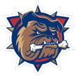 AHL Hamilton Bulldogs Live streaming Hamilton Bulldogs   Hershey Bears AHL tv watch 08.12.2012