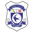 England Cardiff City Live stream Cardiff City vs Newcastle United  August 11, 2012