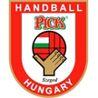 Handball CL Szeged KS Vive Kielce – SC Szeged, 24/03/2013 en vivo