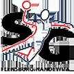 Handball Germany Flensburg H SG Flensburg Handewitt – THW Kiel, 01/06/2014 en vivo