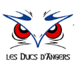 Hockey France Angers Live streaming Angers   Dijon Ligue Magnus tv watch