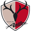 Kashima Antlers Watch Kashiwa Reysol v Kashima Antlers soccer live streaming