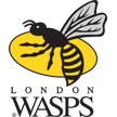 Premiership Rugby London Wasps Watch live Harlequins   London Wasps Aviva Premiership Rugby