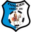 Romania Pandurii Targu Jiu Live streaming Pandurii Târgu Jiu   Hapoel Tel Aviv soccer tv watch August 01, 2013