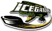 SPHL Louisiana IceGators Live streaming Pensacola Ice Flyers   Louisiana IceGators SPHL tv watch 08.03.2014