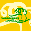 Singapore Woodlands Wellington Albirex Niigata – Woodlands Wellington, 11/06/2014 en vivo