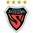 South Korean Pohang Steelers Pohang Steelers – Shandong Luneng Taishan, 18/03/2014 en vivo