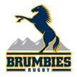 Super Rugby Brumbies Watch stream Rebels   Brumbies Super Rugby