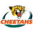 Super Rugby Cheetahs Cheetahs vs Southern Kings rugby union Live Stream