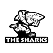 Super Rugby Sharks Watch Online Stream Reds vs Sharks rugby union 21.07.2012