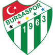 Turkey Bursaspor Fenerbahe vs Bursaspor Live Stream October 20, 2012