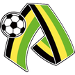 UKR Oleksandria Live streaming PFC Oleksandria vs FC Sevastopol tv watch 3/29/2013